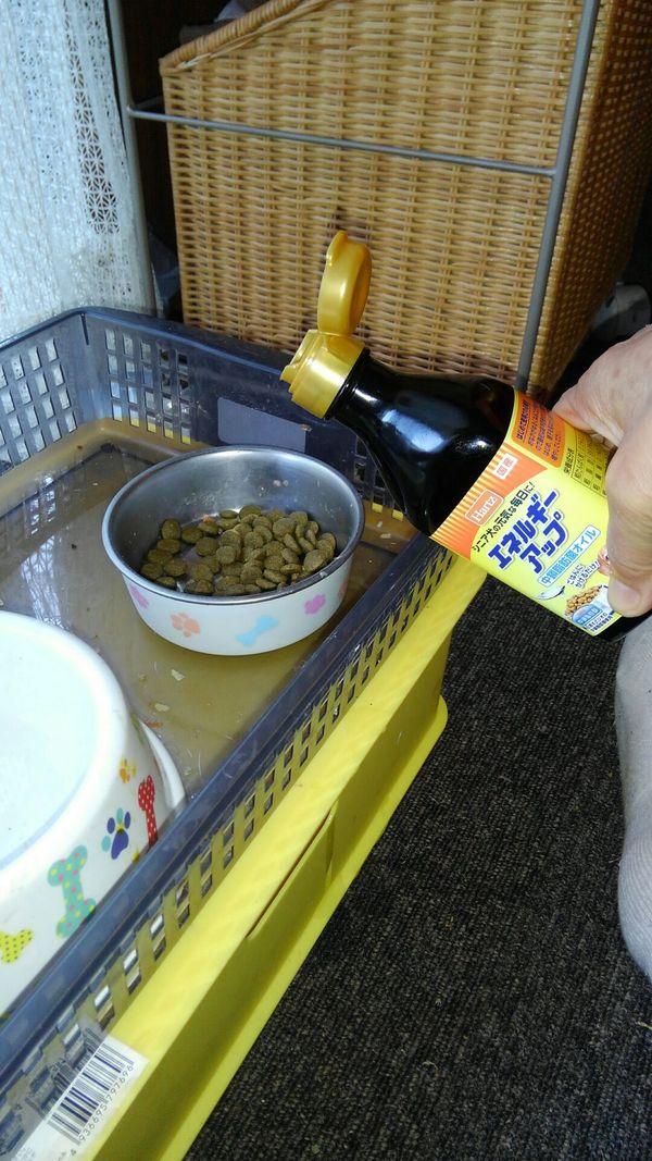 ハーツ® エネルギーアップ 中鎖脂肪酸 オイル