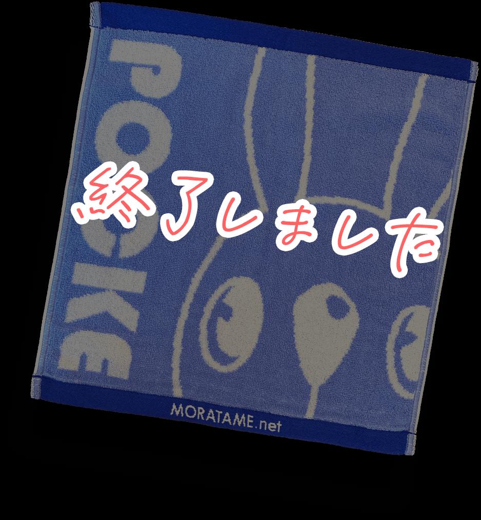 ポッケのハンドタオル vol.2